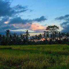 indonesien_059