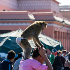 marokko_028