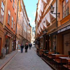 schweden_031