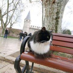 istanbul_005